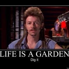 Life is a Garden- Dig It....   Vixouspayments   Scoop.it