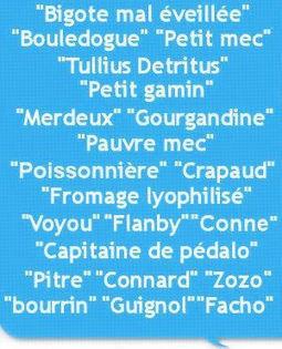 Les pires insultes dumonde politique | Remue-méninges FLE | Scoop.it