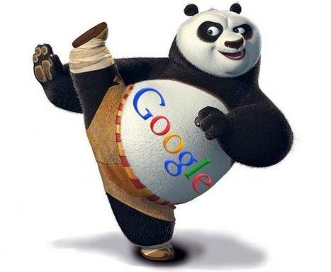 Comment Contrer Google Panda ? | Hémisphère Numérique | Scoop.it