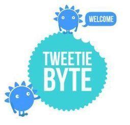 Crea una infografía de tu actividad en twitter con Tweetiebyte   Educación, Comunicación y Redes Sociales   Scoop.it