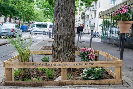 Paris lance des permis pour «végétaliser» tout ce que vous voulez ! | architecture verte | Scoop.it
