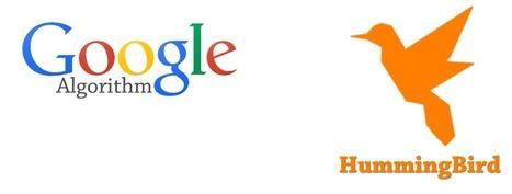 Google Hummingbird : The Semantic Search Algorithm Update   Google Search Algorithm Update News + Penalty Solutions   Scoop.it