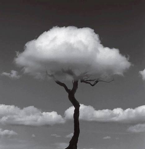 One in four cloud providers will be gone by 2015   L'Univers du Cloud Computing dans le Monde et Ailleurs   Scoop.it
