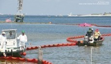 Gulf Oil Spill Cleanup Still a Gaetz Priority - Sunshine State News | Oil Spill | Scoop.it