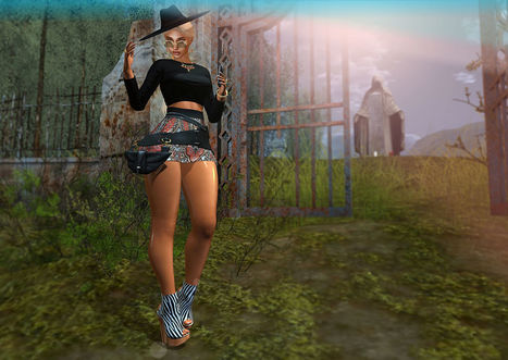 #377 Get Gassed Then Get At Me, Texaco, Shoot Ureself In The Leg, Plexico | finding secondlife freebies | Scoop.it