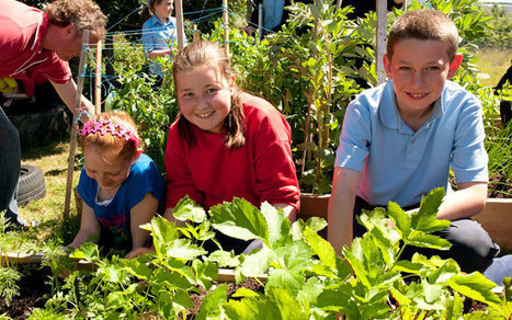 Building gardens builds communities - Mayo News | Community Learning Centres | Scoop.it
