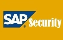 SAP Security Online Training | markssoftware | Scoop.it