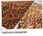 Departments - Rearview - PCT Magazine | eating insects = win | Scoop.it