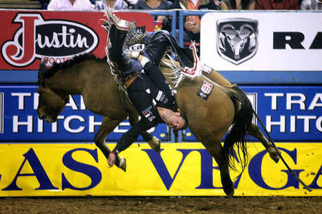 Las Vegas' gold buckle — the NFR — is likely here to stay | Cheval et sport | Scoop.it