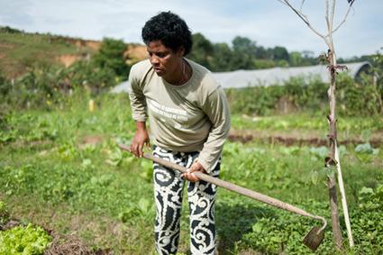 Quand l'agroécologie enrichit les femmes des quartiers populaires | Économie circulaire locale et résiliente pour nourrir la ville | Scoop.it