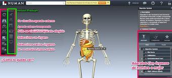 En la nube TIC: Visualiza el cuerpo humano en 3D | RED.ED.TIC | Scoop.it