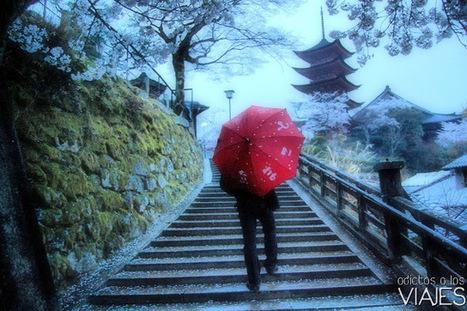 Miyajima, una isla de cuento en Japón ~ Adictos a los viajes - Blog de viajes   Turismo en japon   Scoop.it