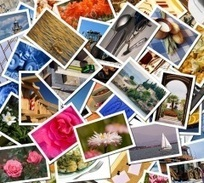 Всемирный день фотографии   Amateur Photographer   Scoop.it