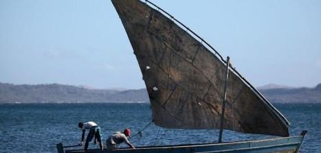 A Madagascar, la pêche thonière industrielle menace l'économie locale - Altermondes | Confidences Canopéennes | Scoop.it
