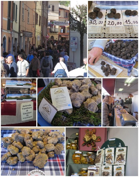 Truffle Fair in Acqualagna | Le Marche another Italy | Scoop.it