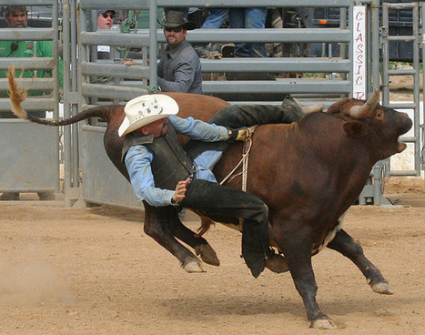"""Rodeo Bans """"Professional"""" SLR Cameras — A Swipe at Animal-Rights Crowd? 