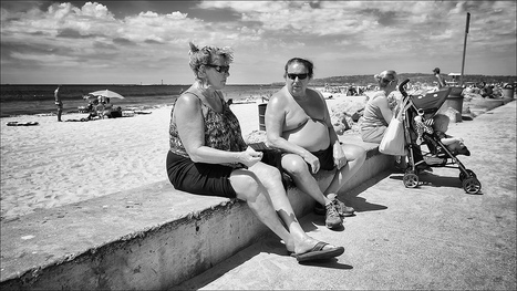 X-Pro1 - Ocean Beach Wildlife | Chris Dodkin | Fuji X-Pro1 | Scoop.it
