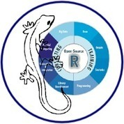 Ramarro | Quantide | R consulting | R training | R everywhere | A world of languages | Scoop.it