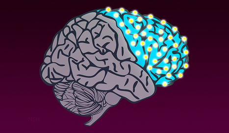 Researchers Map 'Switches' That Shaped the Evolution of the Human Brain | Biomedical Beat | Scoop.it