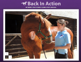Equine Sports Massage Hertfordshire Blog | equinebackinaction | Scoop.it
