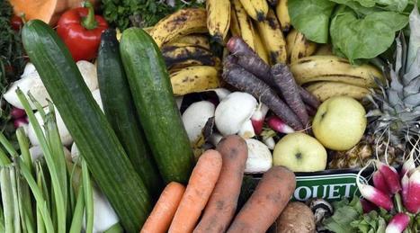 Chaque année, 1,3 milliard de tonnes de nourriture est gâchée | Vie quotidienne | Scoop.it