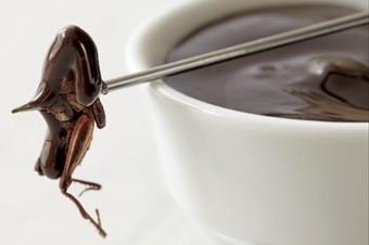 Qui est prêt à manger des insectes ? | Web information Specialist | Scoop.it