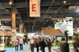 L'événementiel s'engage dans le développement durable | Comm et RSE | Scoop.it