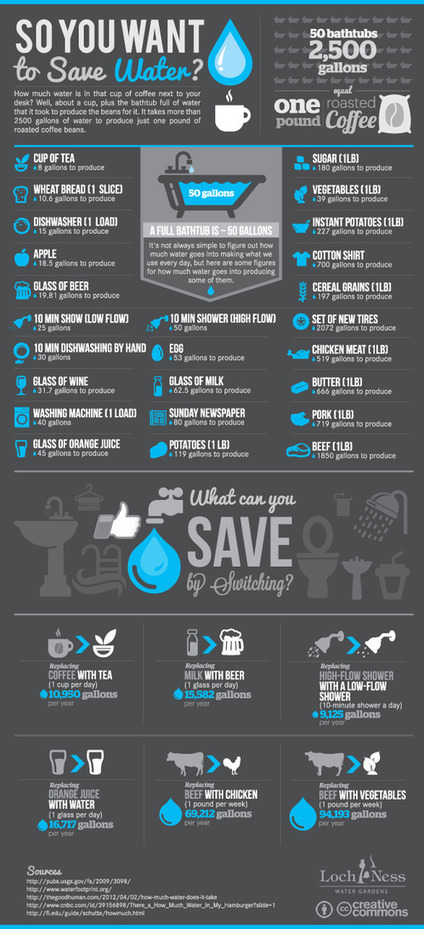 How Can You Reduce Your Water Footprint? | green infographics | Scoop.it