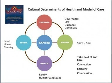 Culture is an important determinant of health: Professor Ngiare Brown at NACCHO Summit – | Aboriginal Health | Scoop.it