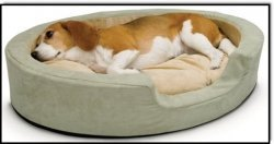 Heated Pet Beds | how pets can help your health | Scoop.it