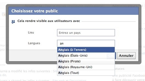 Astuce : Gérer le multilinguisme sur votre mur Facebook | Time to Learn | Scoop.it