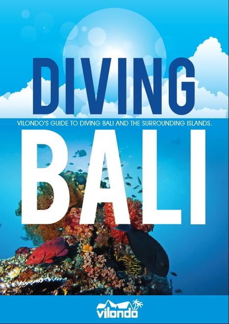 Free diving Ebook | ediving | Scoop.it