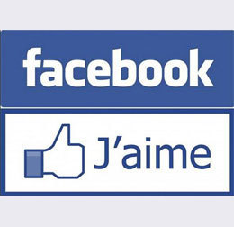 7 Français sur 10 sont sur Facebook, bien plus que Twitter et LinkedIn | Réseaux sociaux pour l'entreprise | Scoop.it