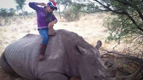 World faces rhino horn dilemma - The Japan Times | Kruger & African Wildlife | Scoop.it