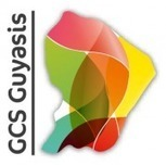 Chef de Projets Organisation & SI (Cayenne, Guyane) | Esanté Easis | Scoop.it