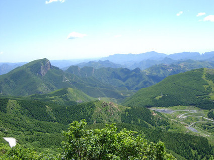 40% of Beijing to be covered by forests - China.org.cn | Forest Keepers Tree news | Scoop.it