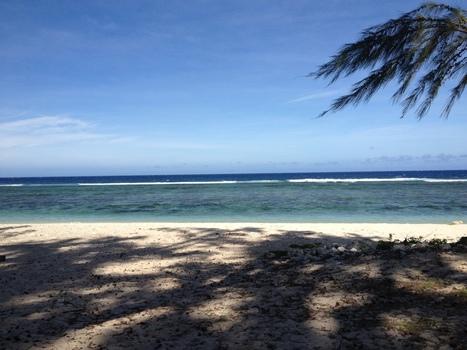 profitez de la plage on s'occupe de tout ! | komOresto | Scoop.it