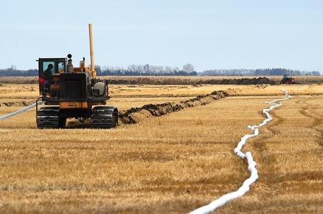 Water management association looking for farmers, landowners | Grain du Coteau : News ( corn maize ethanol DDG soybean soymeal wheat livestock beef pigs canadian dollar) | Scoop.it