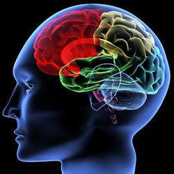 Civil Services Mains exam syllabus: Psychology   Online Result Portal   Scoop.it