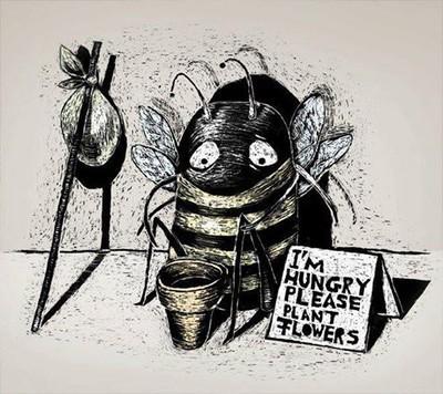 Les cultures intermédiaires mellifères utiles aux abeilles avant l'hiver - Enviscope | Abeilles, intoxications et informations | Scoop.it