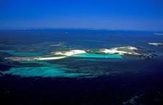 Liste verte des espaces protégés de l'IUCN : le Parc naturel marin d'Iroise distingué | L'environnement en Bretagne | Scoop.it