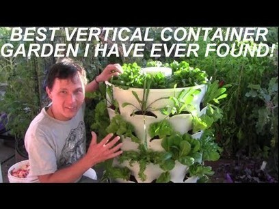 Grow 53 Plants in 4 Sq Ft with a Garden Tower - Container Gardening | Wellington Aquaponics | Scoop.it