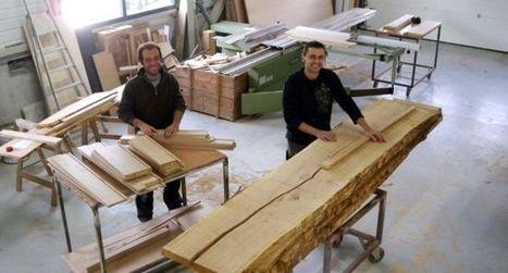 Le duo Amaryllis voit plus grand (12 nov 2015)   Revue de presse du Lycée Collège Vincent Auriol   Scoop.it
