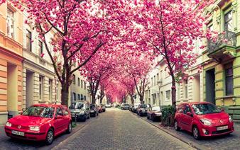Những con đường tình yêu đẹp ngỡ ngàng trên thế giới   Intersection   Scoop.it