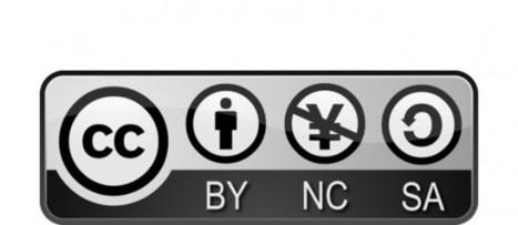 Creative Commons – Das vorformulierte Lizenzsystem - Social Media | Big Transition | Scoop.it