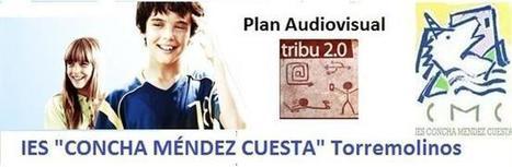 El Plan Audiovisual como eje del Plan de Acción Tutorial | Acción Tutorial | Scoop.it