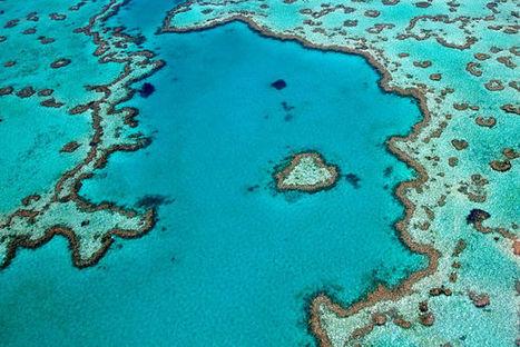 Australie : Whitsunday, archipel de rêve | Guide évasion | Guide de voyage | Scoop.it