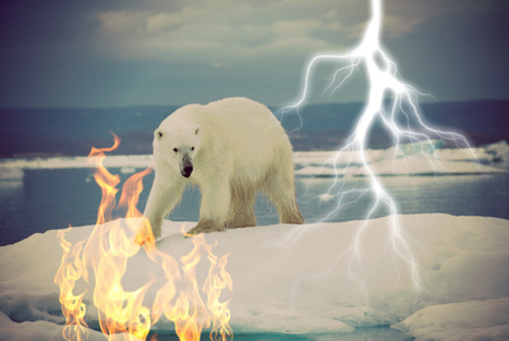Yikes! Government Details 6 Most Terrifying Arctic Trends | Laying claim to the Arctic | Scoop.it