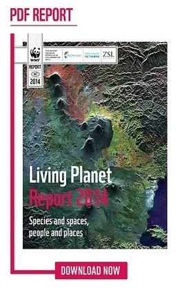 BIODIVERSITY: The Living Planet Report 2014 | > Animal Welfare | Scoop.it