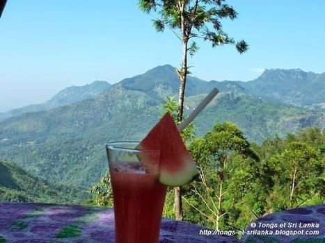 Des Tongs au Sri Lanka: Quels profils de voyageurs peuvent aimer le Sri Lanka ? | Actu & Voyage au Sri Lanka | Scoop.it